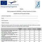 Project meetings evaluation form